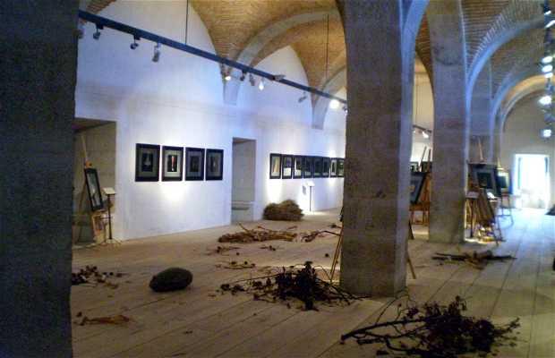 Anima Vegetalis Exhibition