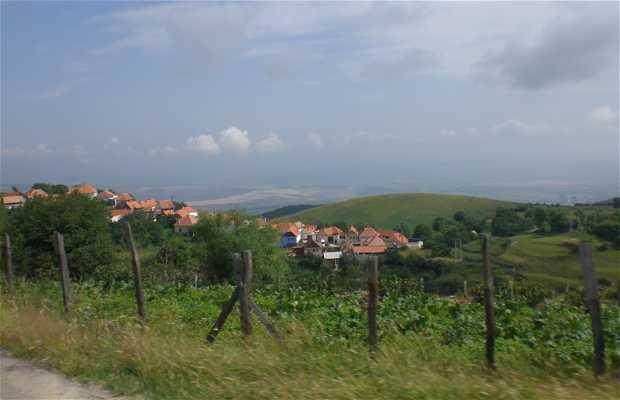 Carretera a Poiana Sibiului