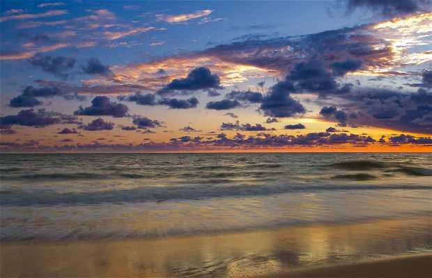 Matalascañas Beach