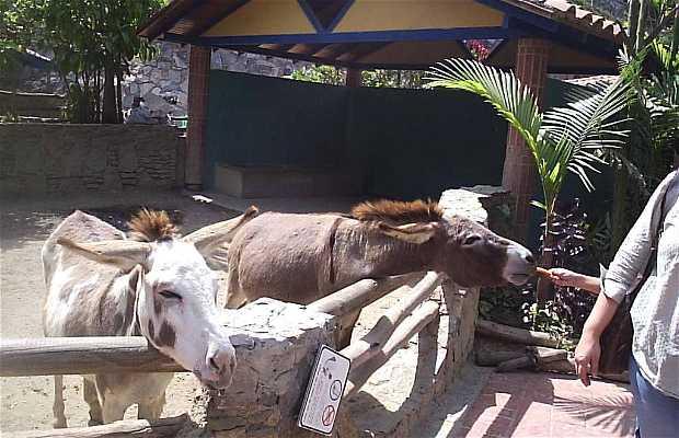 Zoologico Expanzoo