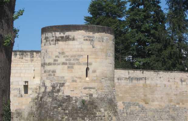 L'ancien château de Saint-Dizier