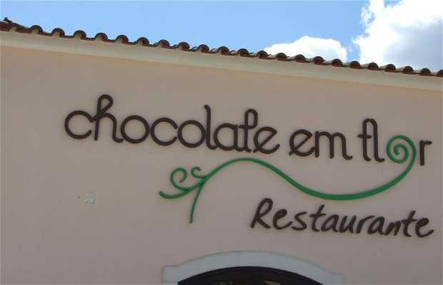Chocolate em Flor