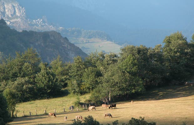 Montañas de Cosgaya
