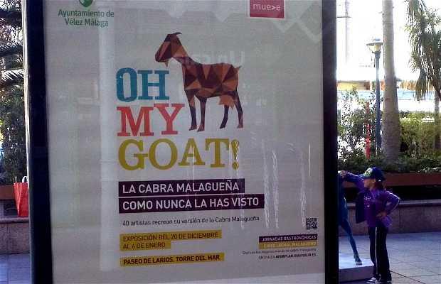 Oh my goat - la exposición