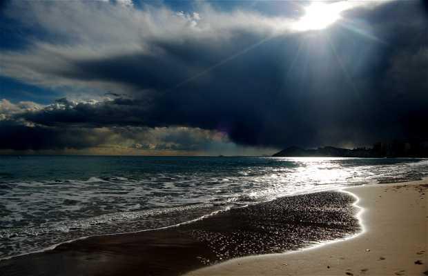 Praia de Alicante
