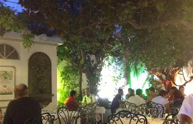 Le Jardin du Magnolia