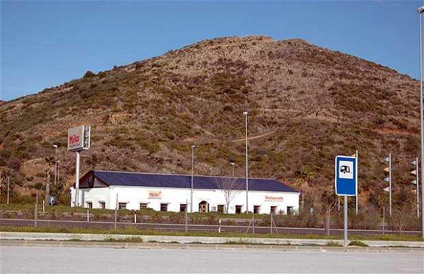 Area de Servicios Medas
