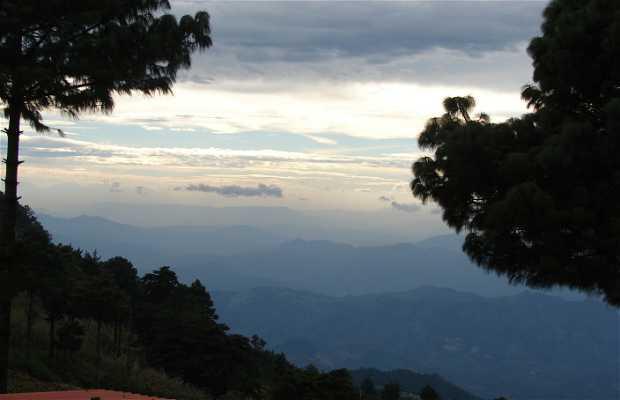 Bosque El Pital