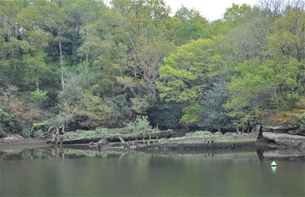 Paseo del Bosque de Amor