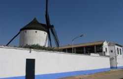 Uncle Genaro wind mill