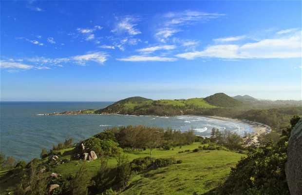 Praia Garopaba Brasil