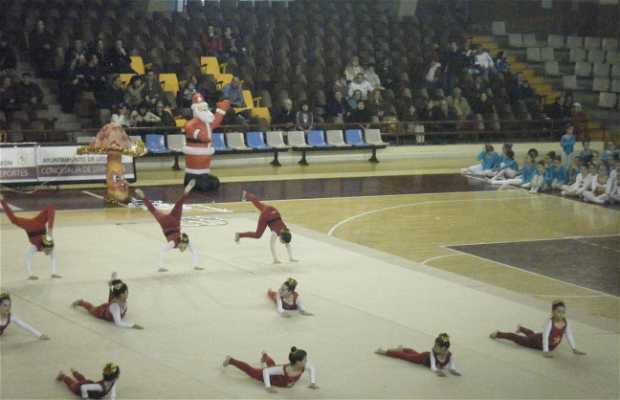 Rhythmic gymnastics exhibition