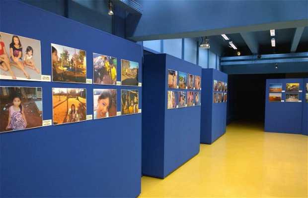 Museu da Imagem e do Som de Mato Grosso do Sul