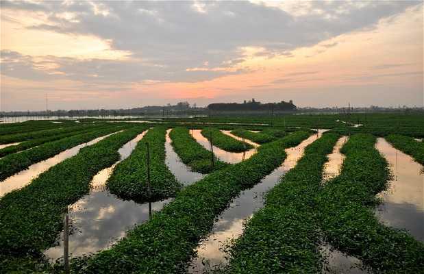 Lago Boeng Tompun