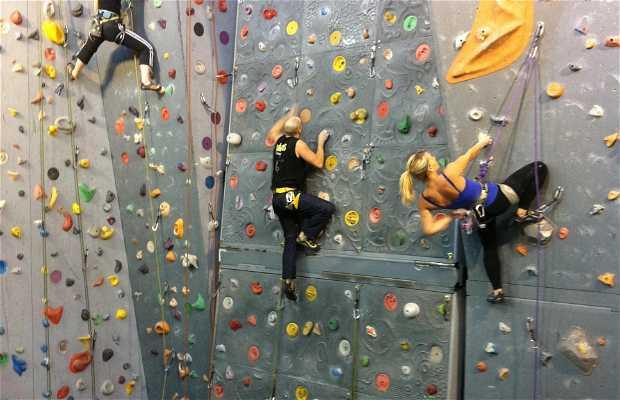 Mur d'escalade Gymnase Godart Roger