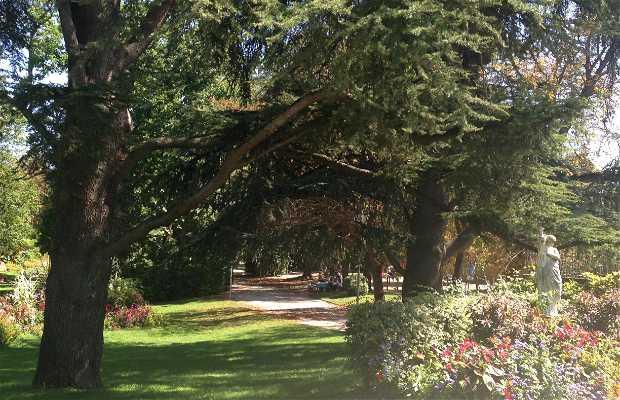 Jardin des plantes montauban 2 exp riences et 5 photos - Restaurant jardin des plantes toulouse ...