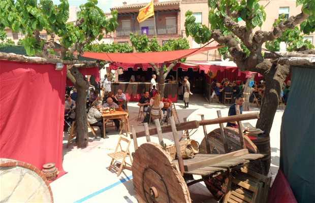 Sant Jordi legend medieval week