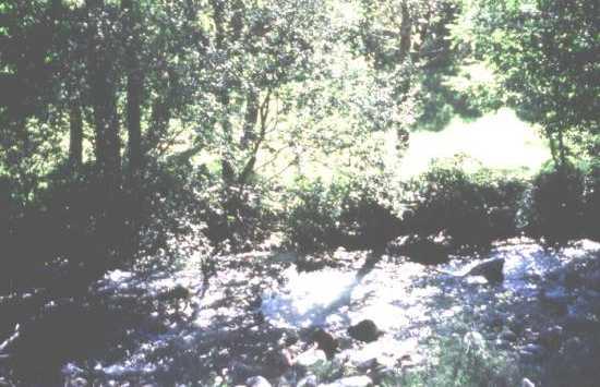 Boeza Valley