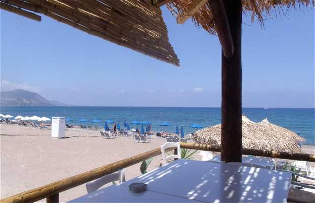 Island lounge beach bar