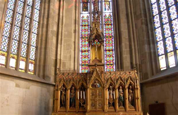 St. Martin's Cathedral (Dom svateho Martina)