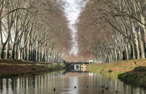 By Boat from the Garonne to the Canal of Midi