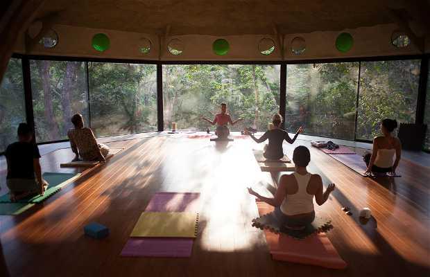 Equilibrium Wellness Centre