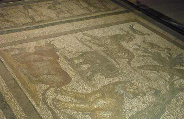 Mosaici romani a Istanbul