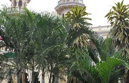 Ayuntamiento de Mysore