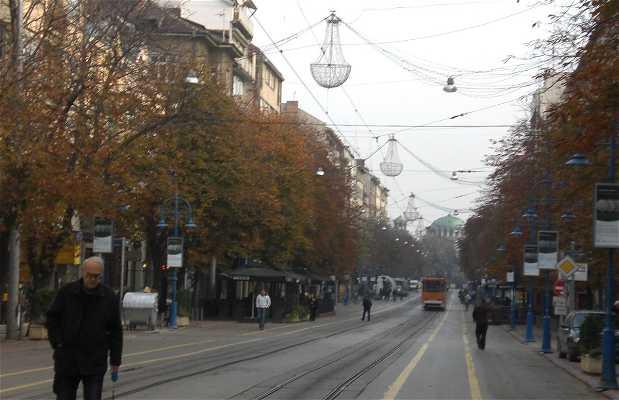 Calle Vitosha
