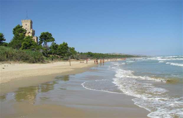 Playa de Pineto (zona Torre di Cerrano)
