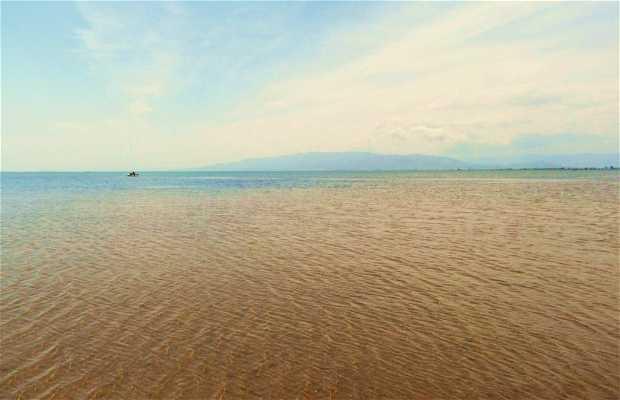 Bahía dels Alfacs - Bahía de los Alfaques