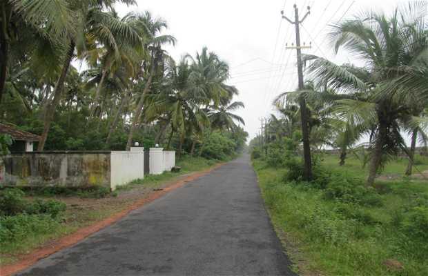 Munambam Road