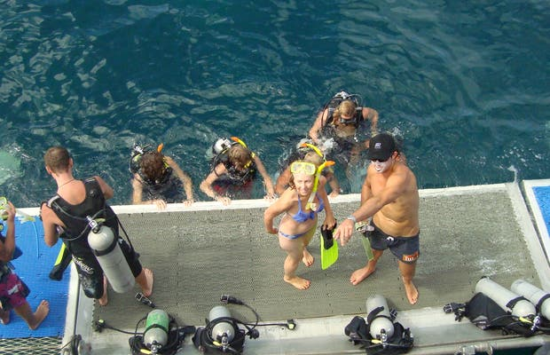 Diving in Cairns