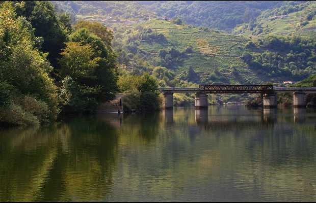 River Miño