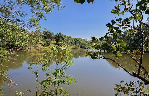 Lago do Café