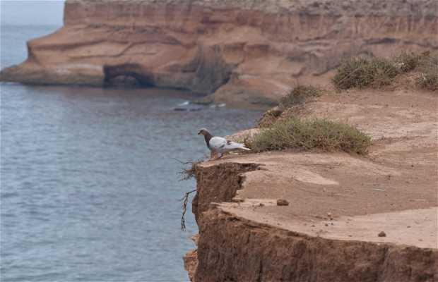 La plage d'Arkman Nador, Maroc