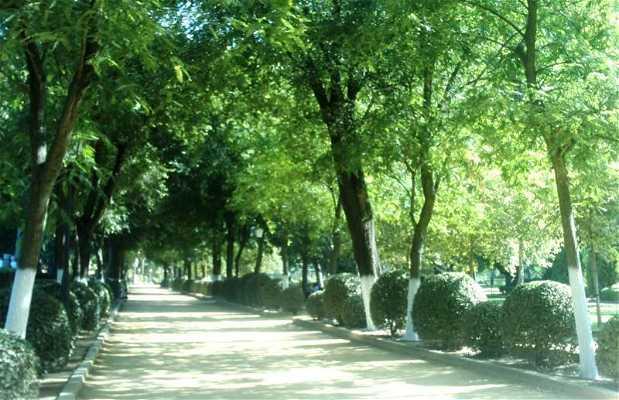 Parque de la Consolación