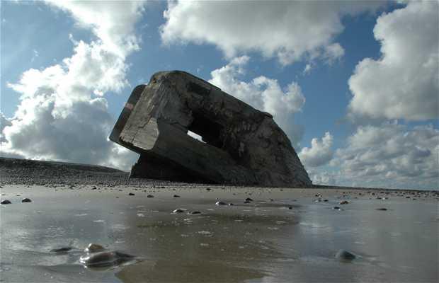 Bahia del Somme
