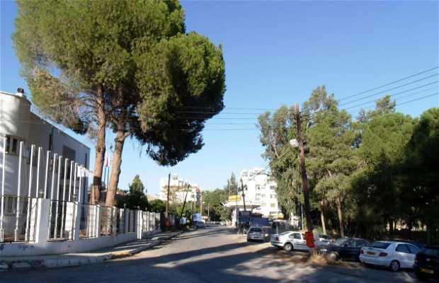 Paso fronterizo de Ledra Palace (para vehículos) Nicosia
