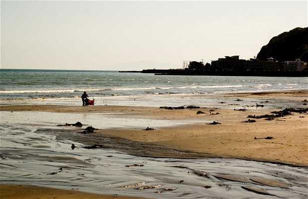 Playa Kamakura