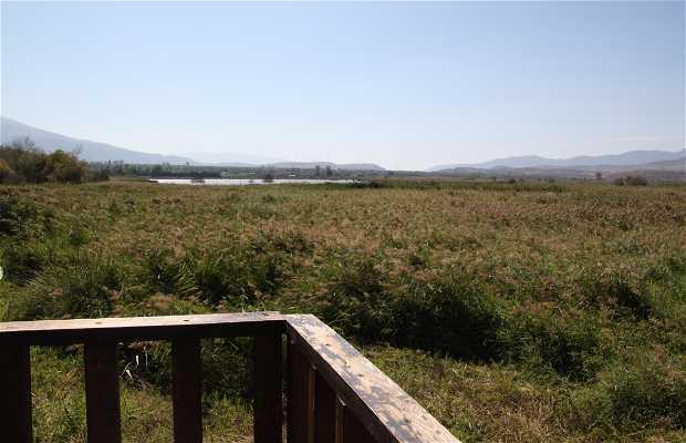 Laguna del Padul