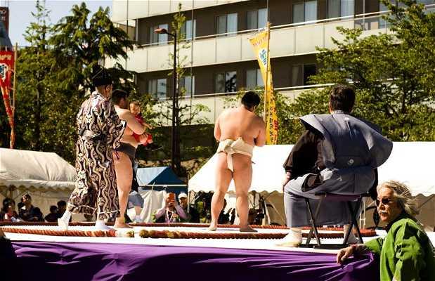 Festival Nakizumo