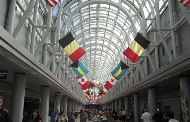 Aeropuerto Internacional Chicago-O'Hare
