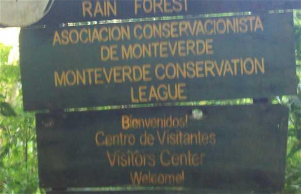 Bosque eterno de los Ninos