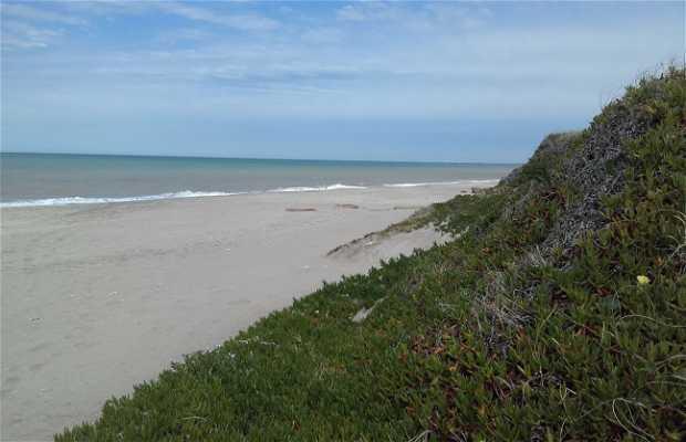 Playa de Mar de Cobo