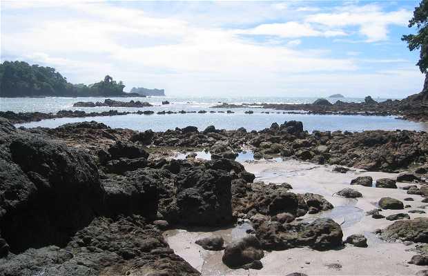 Route de la cathédrale Punta à Manuel Antonio