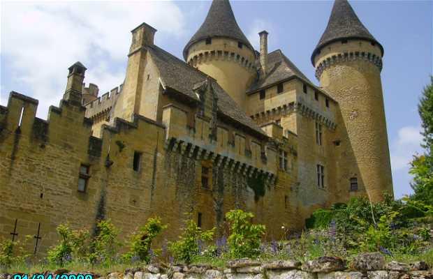 Chateau de Puy Martin