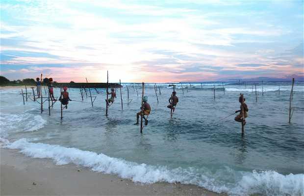 Stick Fishermen in kokkala