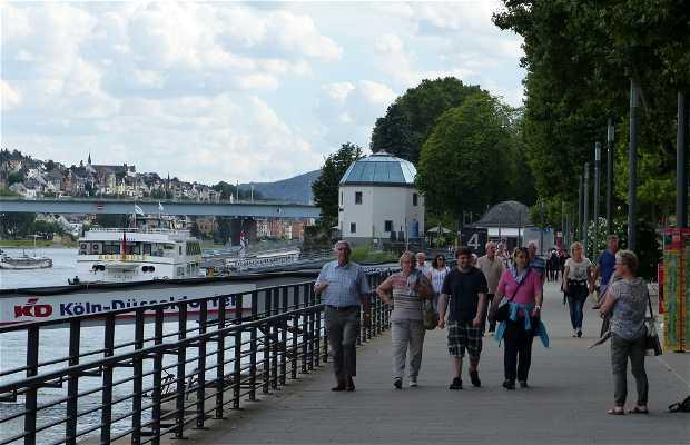 Los parques Rheinanlagen