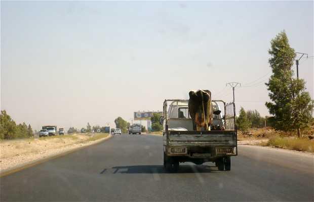Carretera de Damascus a Bosra